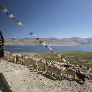 TSO MORIRI   terra di nomadi