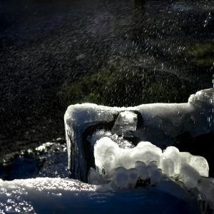 Gennaio 2019 - Il freddo