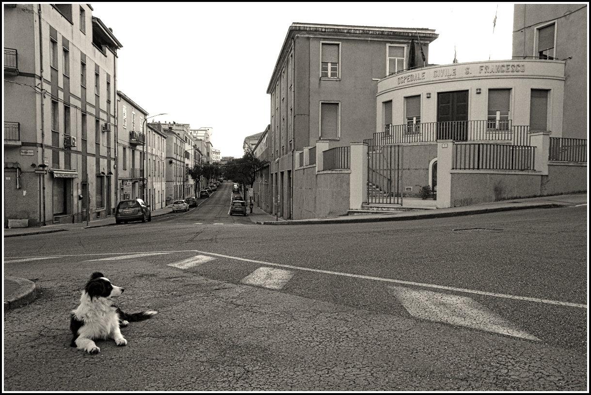 La città consente di vedere senza essere visti e di essere visti senza vedere. (Serge Daney)