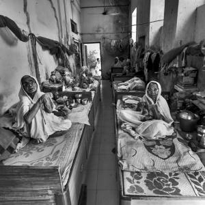 Bianche Vedove di Vrindavan